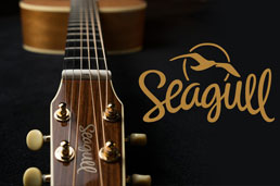 Most comprehensive Seagull Guitars Review- Read it before you buy one