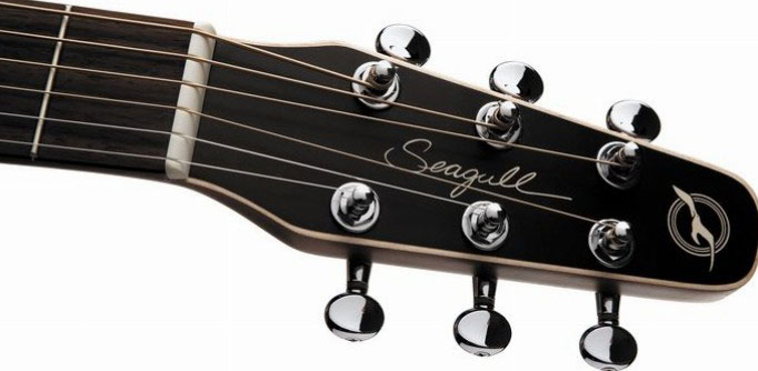 Headstock, Nut and Saddle